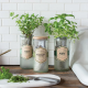 Eco Planter Grow Kit from Modern Sprout