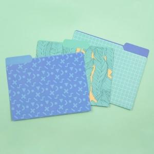 File Folders 12 Pack from yoobi