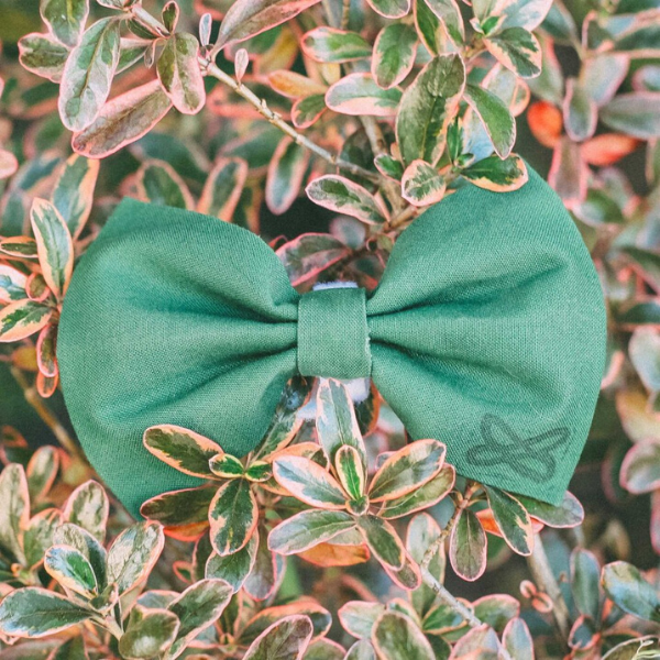 Signature Bow Tie from Imagine Tomorrow